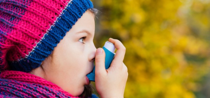 Exposure to cadmium in the womb linked to childhood asthma and allergies