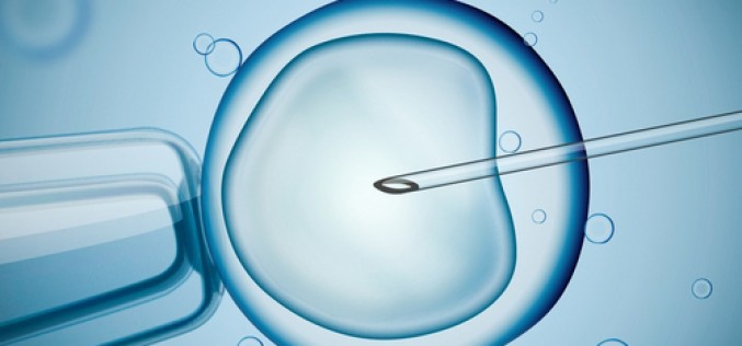 Teva supports IVF-Worldwide to gain insights into possibility of preserving fertility in women with cancer