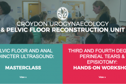 1-2 June 2019, Pelvic floor & Anorectal Ultrasound Masterclass: Two-day Hands-on Masterclass; Croydon University Hospital