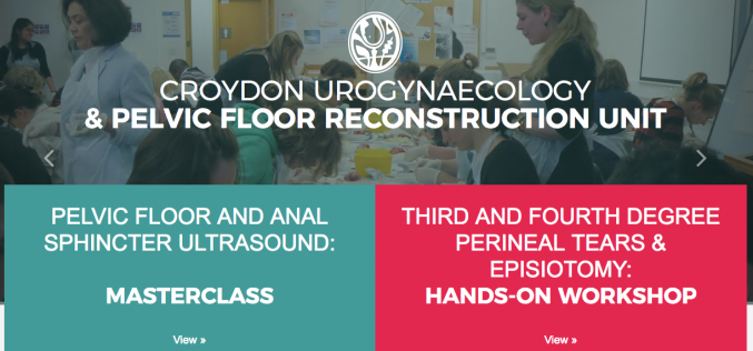 6 July 2019, 30 March 2019, Third and Fourth Degree Perineal Tears & Episiotomy: One Day Hands-on Workshop; Croydon