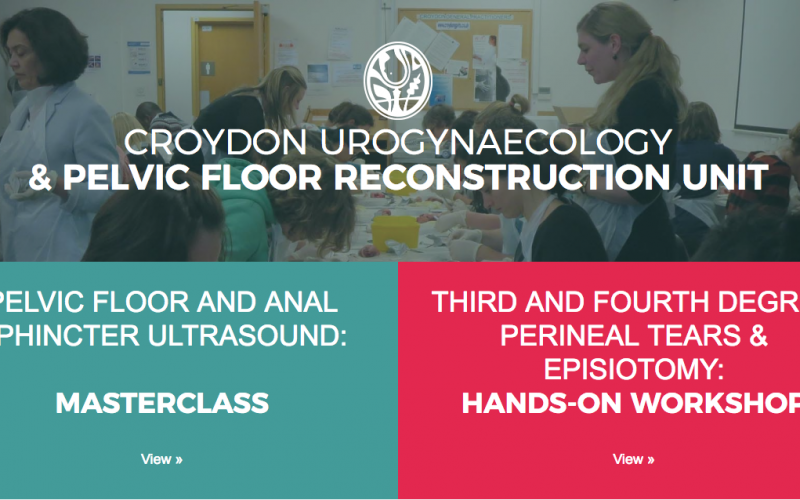 16 November 2019, Third and Fourth Degree Perineal Tears & Episiotomy: One Day Hands-on Workshop; Croydon