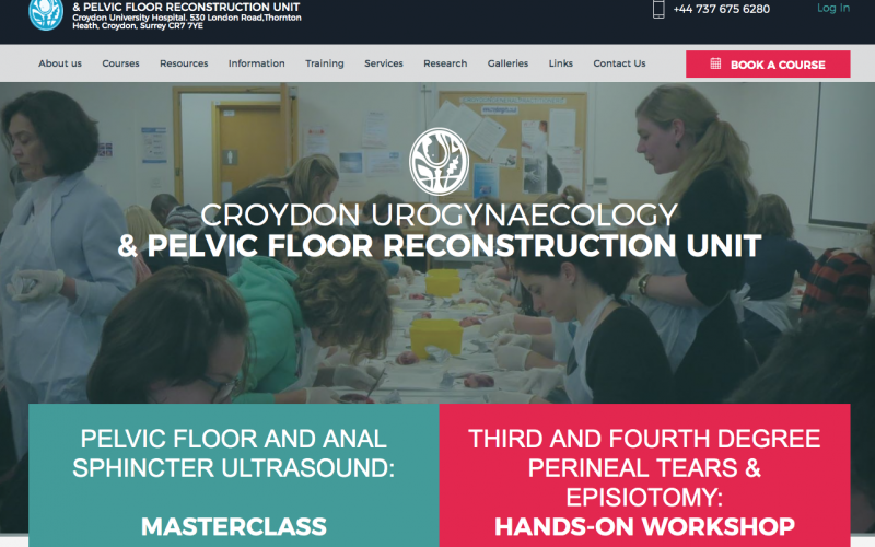 22 February 2020, Third and Fourth Degree Perineal Tears & Episiotomy: One Day Hands-on Workshop; Croydon