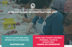 14 November 2020, Third and Fourth Degree Perineal Tears & Episiotomy: One Day Hands-on Workshop; Croydon