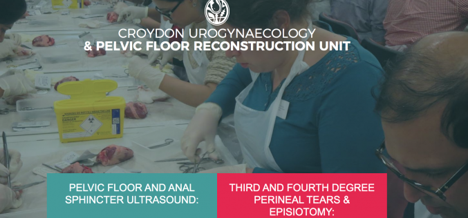 25 April 2020, Third and Fourth Degree Perineal Tears & Episiotomy: One Day Hands-on Workshop; Croydon