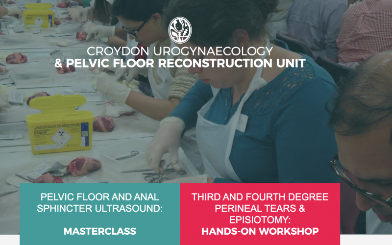 13 June 2020, Third and Fourth Degree Perineal Tears & Episiotomy: One Day Hands-on Workshop; Croydon