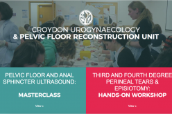 18-19 July 2020, Pelvic floor & Anorectal Ultrasound Masterclass: two-day Hands-on Masterclass; Croydon