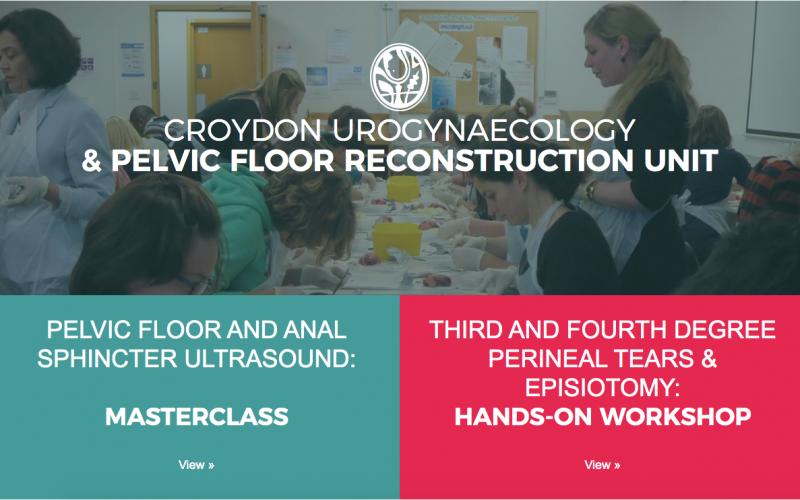 18-19 July 2020, Pelvic floor & Anorectal Ultrasound Masterclass: two-day Hands-on Masterclass; Croydon