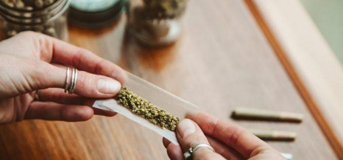 Marijuana may impair female fertility