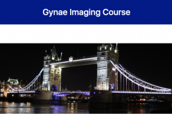 5-6 November 2020, 4th Gynae Imaging Course; London and virtual